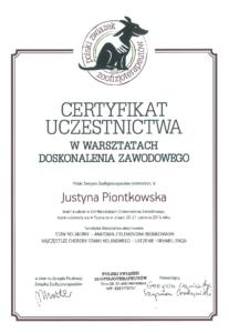 leczenie i rehabilitacja - dyplom